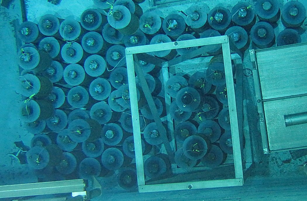 Experience-Low-and-Intermediate-Level-Waste-Auxiliary-Pool-ccnuclear-min
